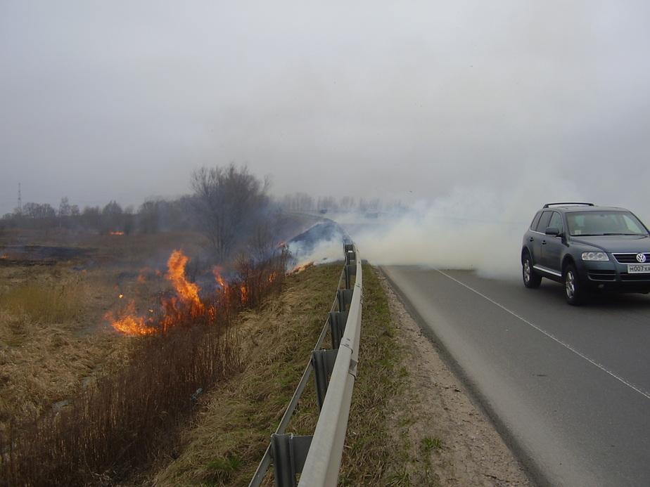 На Приморском кольце столкнулись 10 автомобилей- движение перекрыто -ФОТО- - Новости Калининграда