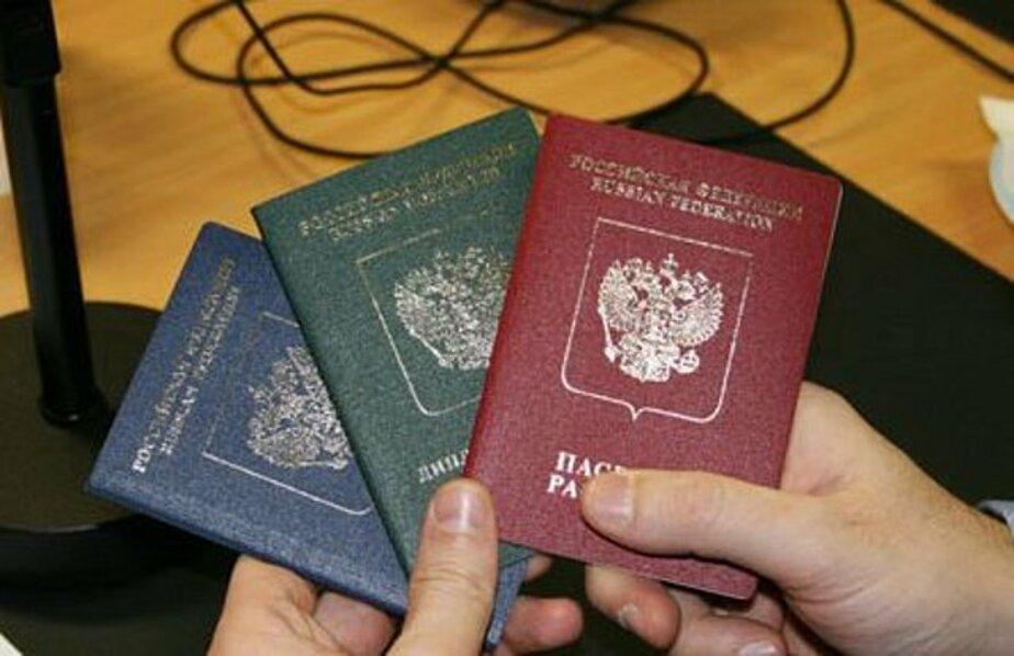В Храброво задержали двух узбеков с поддельными документами - Новости Калининграда