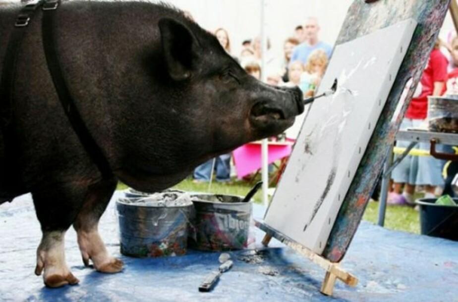 «Искусство – это весело» - Новости Калининграда