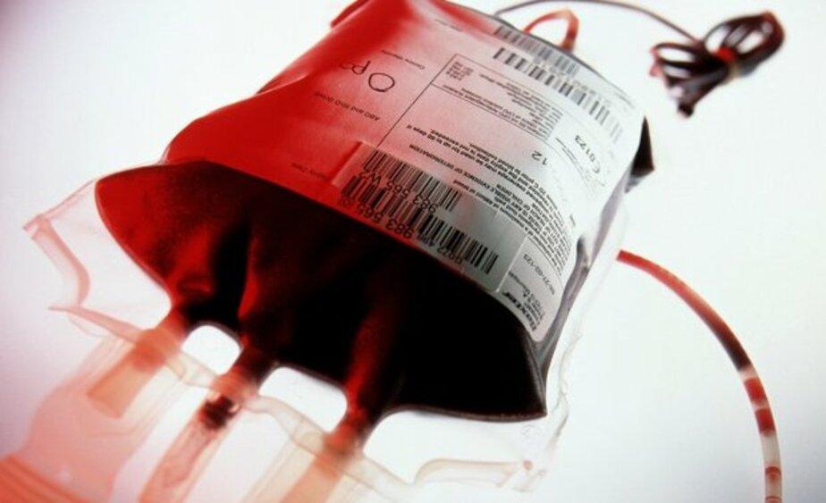 Калининградские больницы остро нуждаются в донорской крови - Новости Калининграда