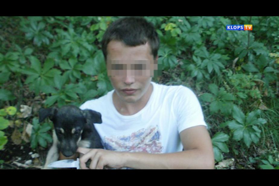 В Калининградской области школьники и студенты разыскивают подростка - живодера - Новости Калининграда