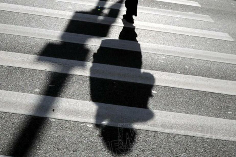 За три дня в Калининграде и области сбили шесть пешеходов