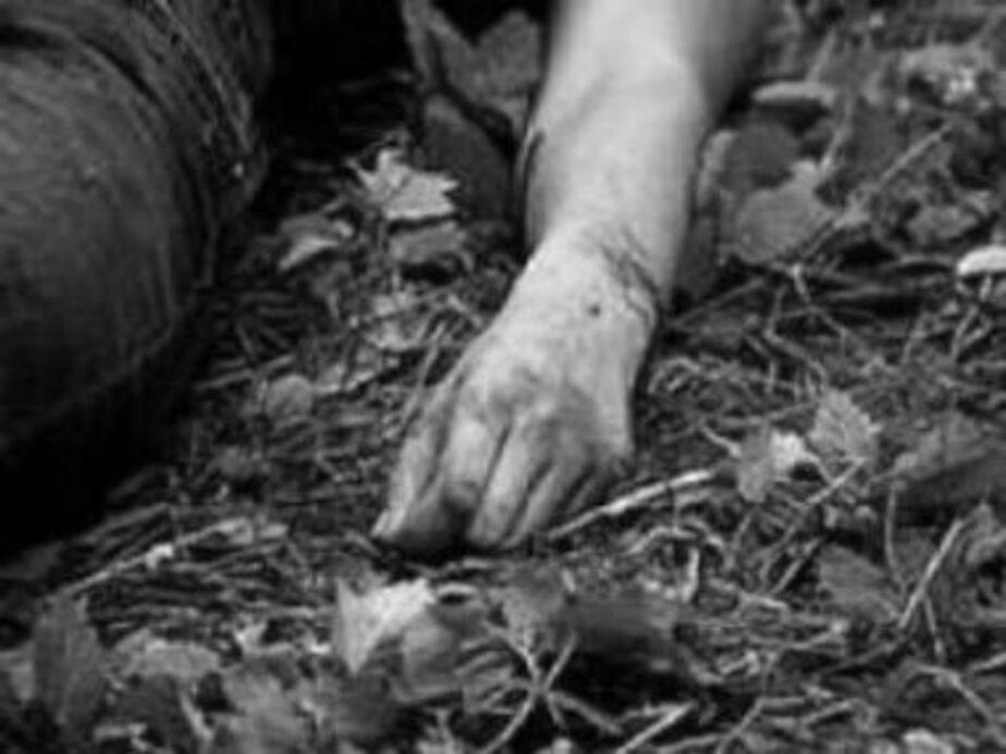 В Балтийске в районе очистных найден труп женщины - Новости Калининграда