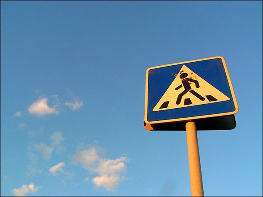 ГИБДД- 1 сентября около каждой школы на переходах будет дежурить инспектор ДПС - Новости Калининграда