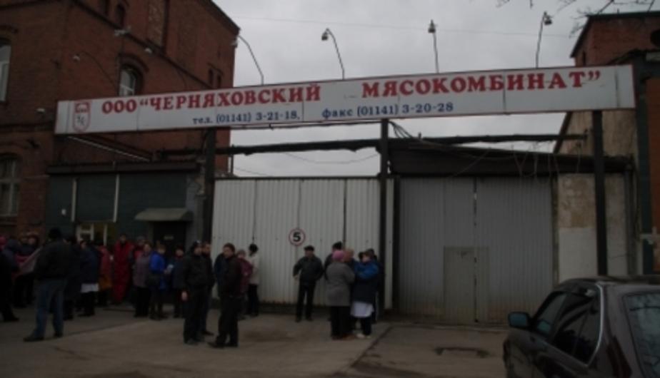 Черняховский мясокомбинат, где бастуют рабочие, уходит в вынужденный простой - Новости Калининграда