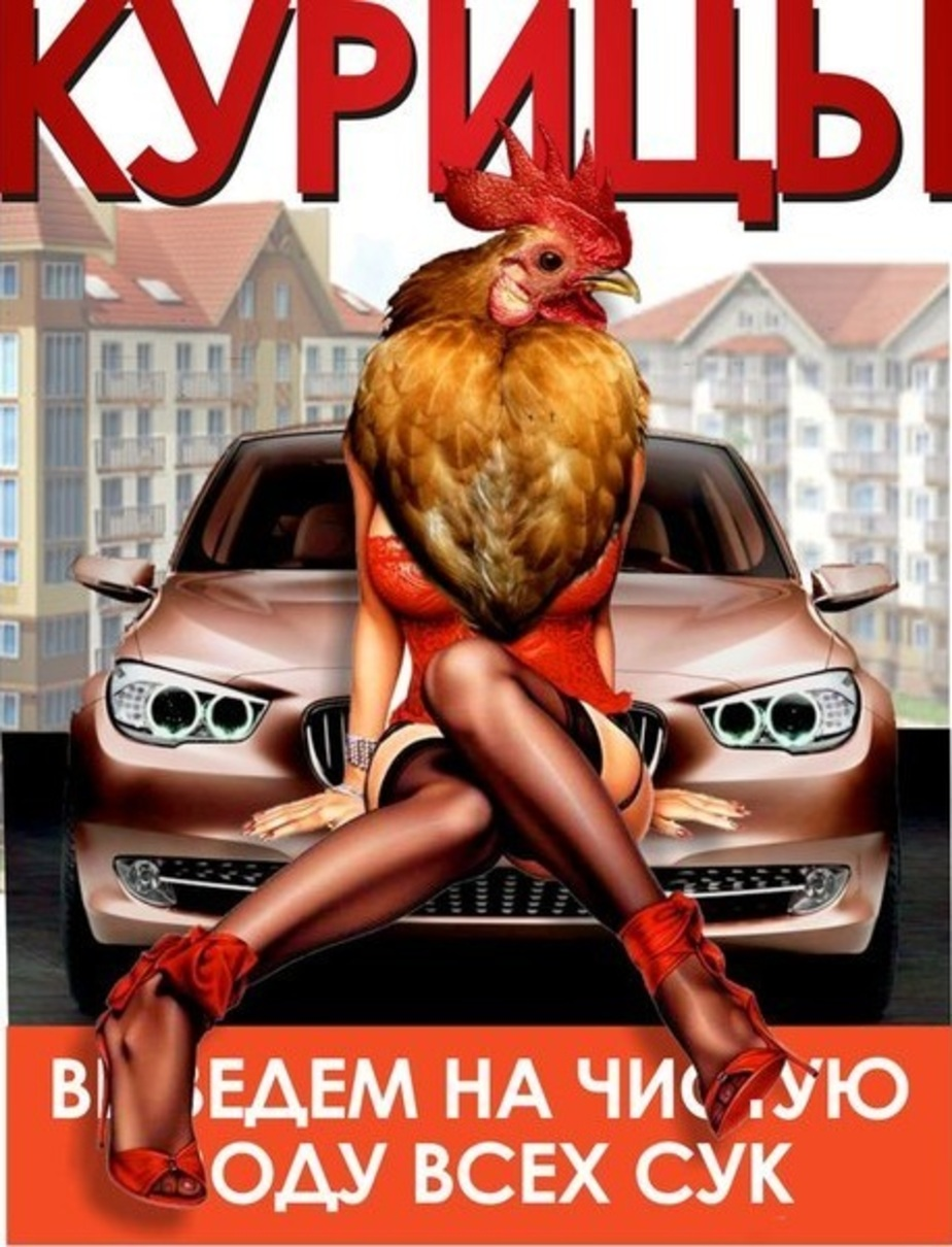 """18-летняя девушка пыталась повеситься из-за """"Куриц Калининграда"""" - Новости Калининграда"""