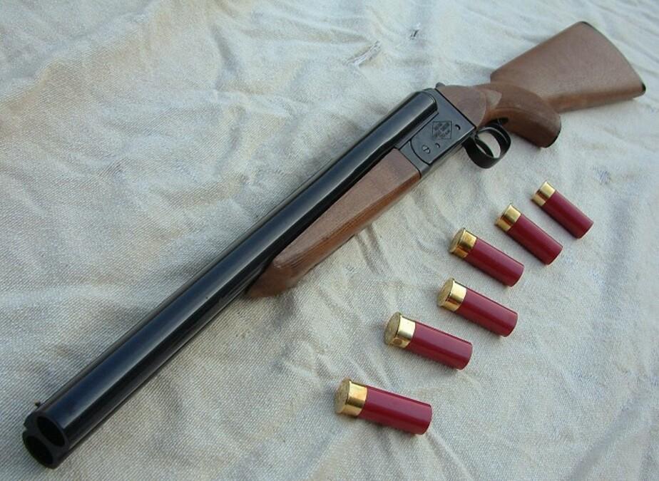 Житель Черняховска украл у своего собутыльника охотничье ружье и продал его своему другу - Новости Калининграда
