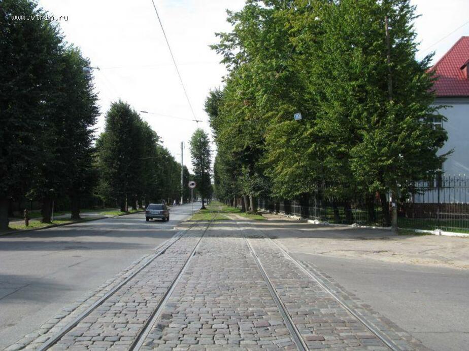 Одну трамвайную полосу на ул. Тельмана отдадут пешеходам и велосипедистам - Новости Калининграда