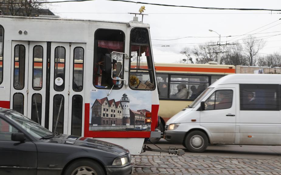 На маршрутную сеть общественного транспорта в Калининграде потратят 25 млн - Новости Калининграда