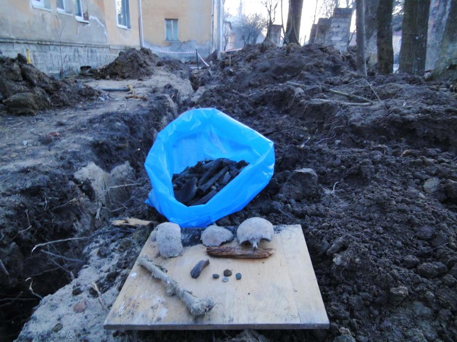 В Правдинске случайно совершили открытие века, обнаружив в земле останки воинов Фридландского сражения - Новости Калининграда