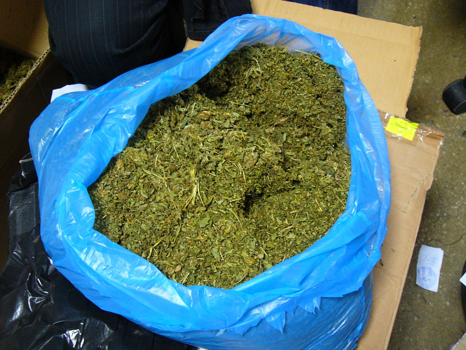 В Черняховске студент педагогического института продавал марихуану на переменах