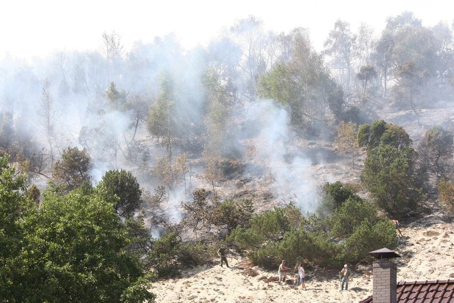 Следствие: пожар на дюне Эфа мог произойти из-за сварщиков  - Новости Калининграда
