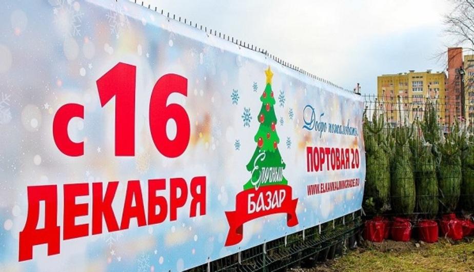 В центре Калининграда открылся ёлочный базар