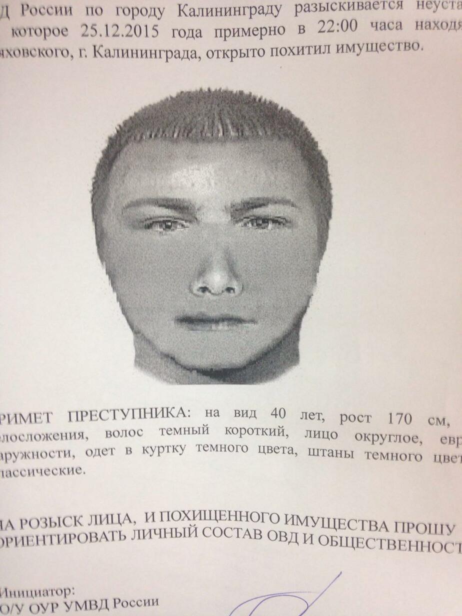 В Калининграде разыскиваются очевидцы похищения сумки у женщины (фоторобот)