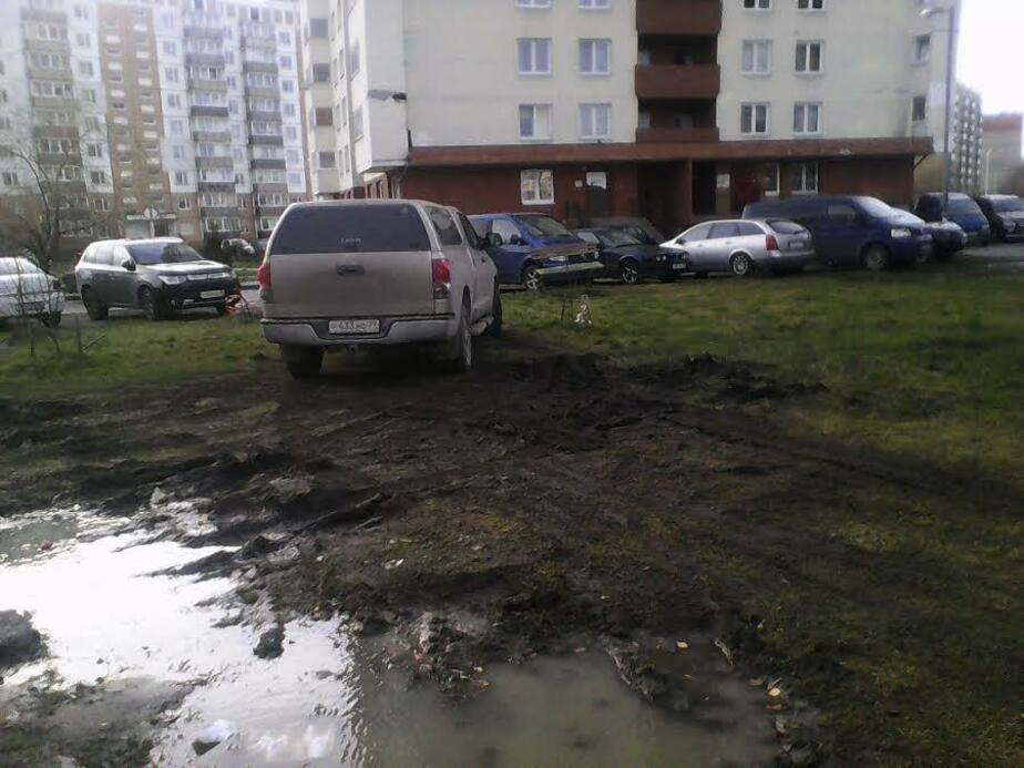 """""""Водитель, ты… судак"""": водители уничтожают газон на ул. Маточкина"""