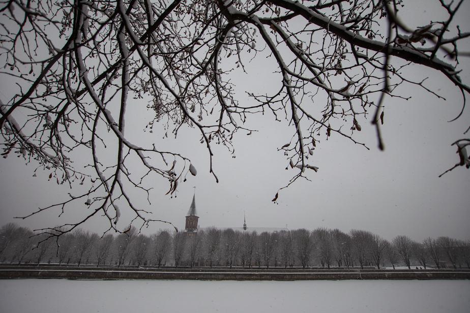 Синоптики предупредили калининградцев о гололедице и мокром снеге