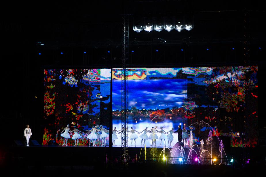 Калининградцы увидели на Верхнем озере танец маленьких лебедей (видео) - Новости Калининграда