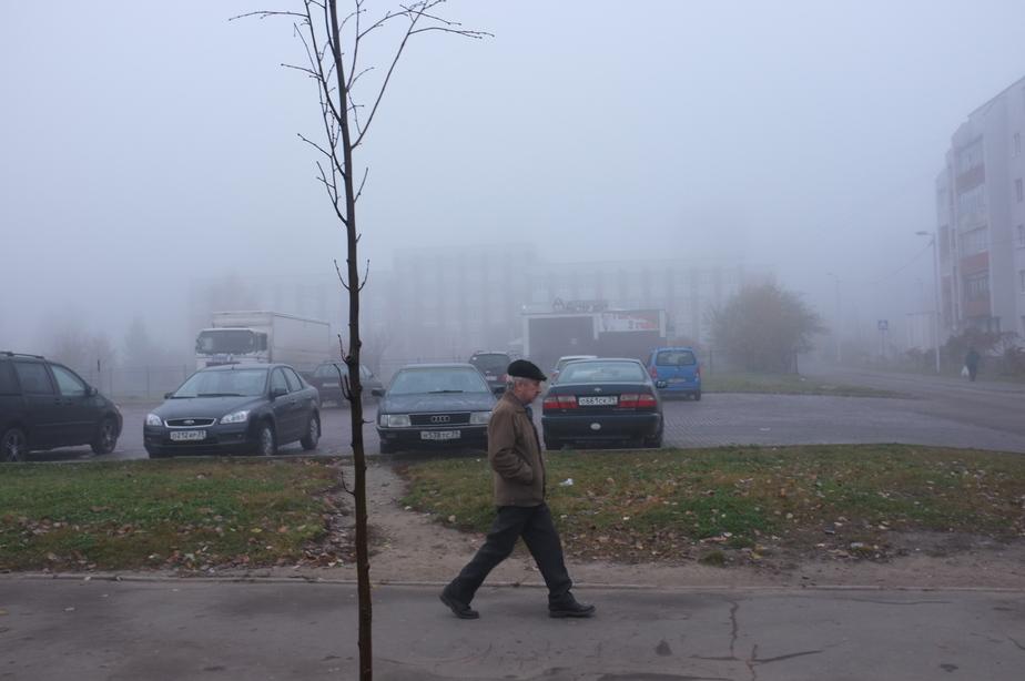 Антициклон принес в Калининград ночной снег и туманы - Новости Калининграда