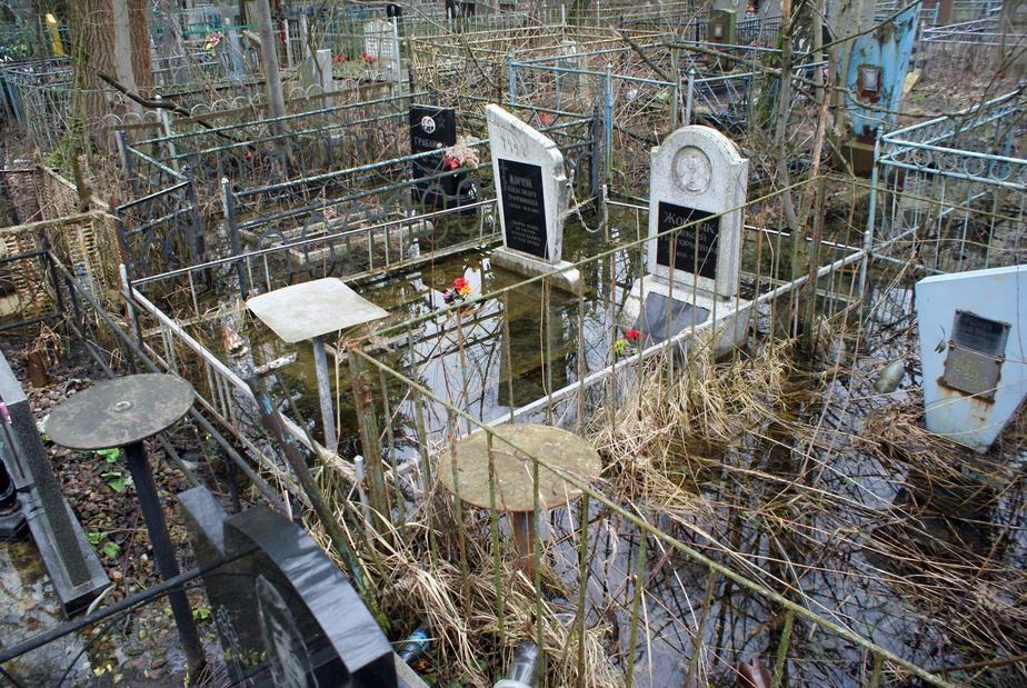 Могилы под водой: в Калининграде затопило кладбище - Новости Калининграда