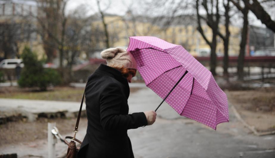 В Калининграде в понедельник ветер усилится до 11 м/с