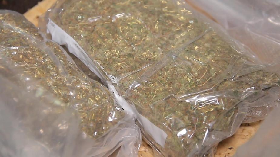 Калининградец пытался доставить марихуану в колонию  - Новости Калининграда