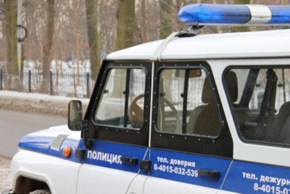 Под Черняховском задержали браконьеров с тушами шести кабанчиков и одного лося