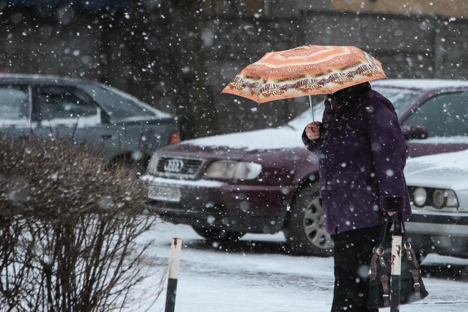 В Калининградской области ожидается ветер порывами до 23 м/с