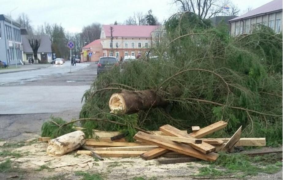 В Советске и Краснознаменске сломались городские ёлки (фото)
