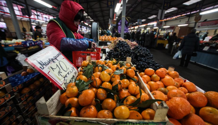 В Калининграде в партии мандаринов из ЮАР обнаружили личинки плодовой мухи - Новости Калининграда