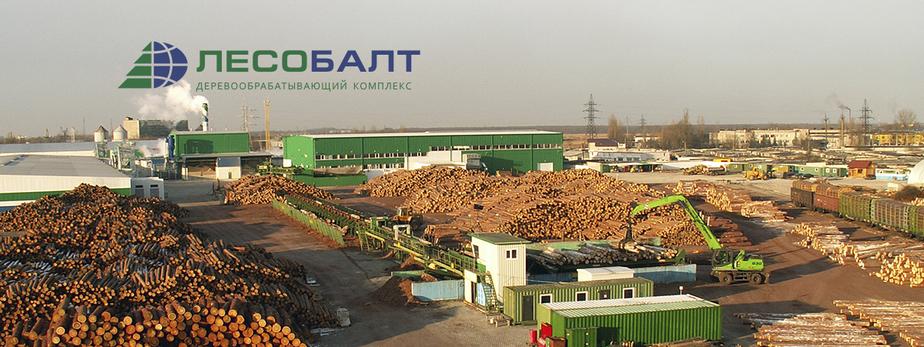 Естественность в тренде: калининградцы могут приобрести качественную экологически чистую древесину по сниженным ценам