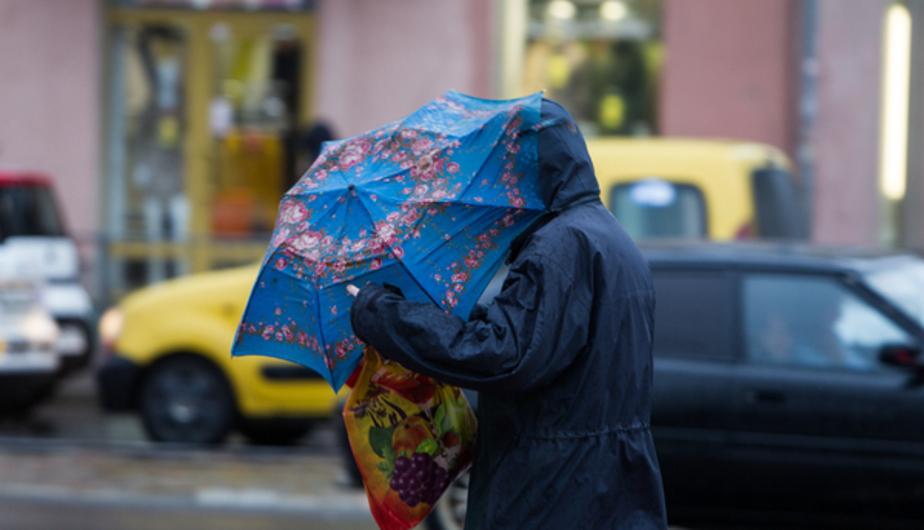 В Калининграде на один день стало теплее, чем в Краснодарском крае - Новости Калининграда