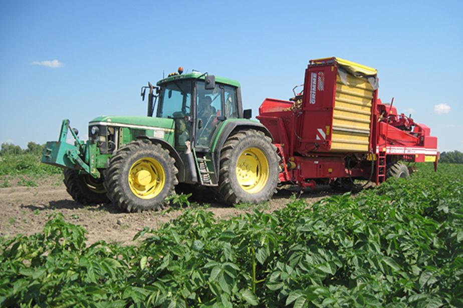 Калининградские фермеры предоставили 60 бизнес-планов по выращиванию фруктов и овощей  - Новости Калининграда