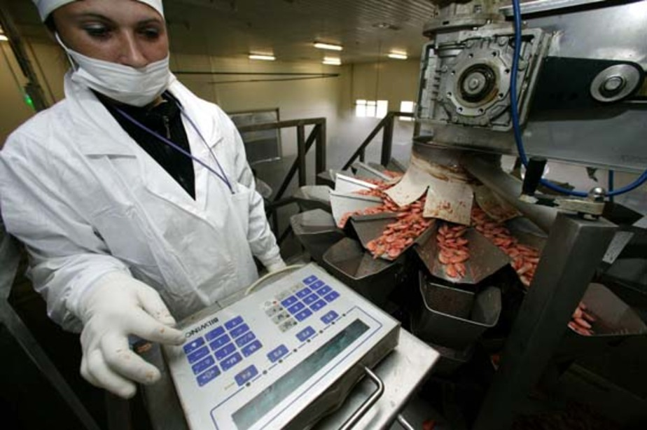 В России выросло число вакансий, нужны продавцы и рабочие - Новости Калининграда