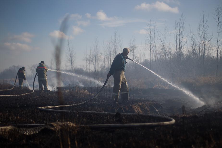 Дым без огня: Как тушат торф в Гурьевском районе (фото) - Новости Калининграда