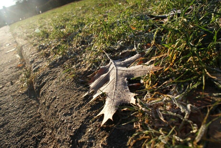 Калининградский Гидрометцентр рассказал, какая погода будет в новогоднюю ночь - Новости Калининграда