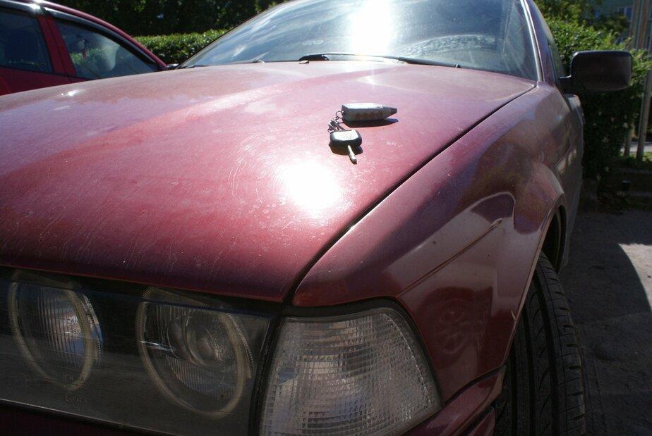Калининградец попрыгал на капоте машины, с владельцем которой поругался - Новости Калининграда