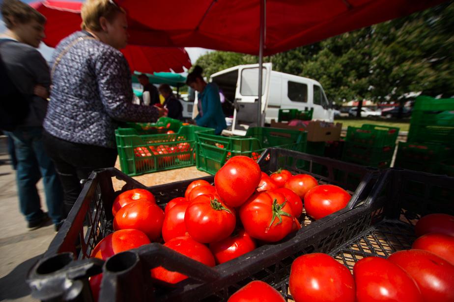 РПЦ готова поставлять в торговые сети форель, моцареллу и овощи - Новости Калининграда