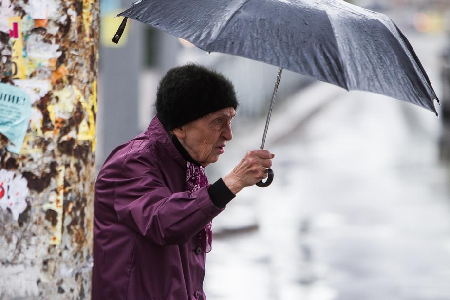 Синоптики: предстоящая неделя в Калининграде будет тёплой и дождливой - Новости Калининграда