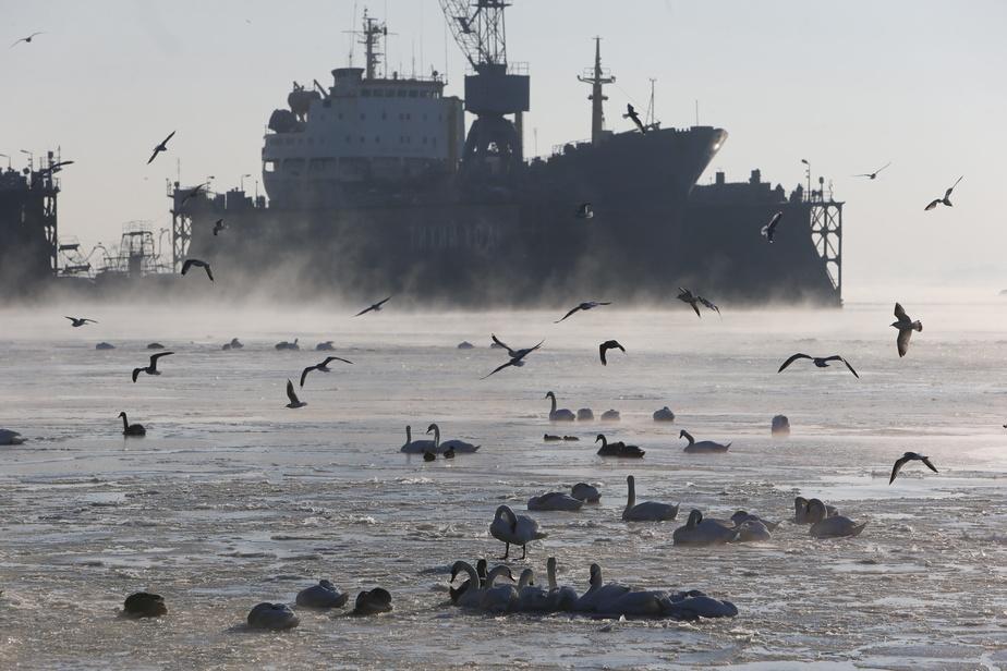 Роспотребнадзор назвал опасные для купания места в Калининградской области - Новости Калининграда