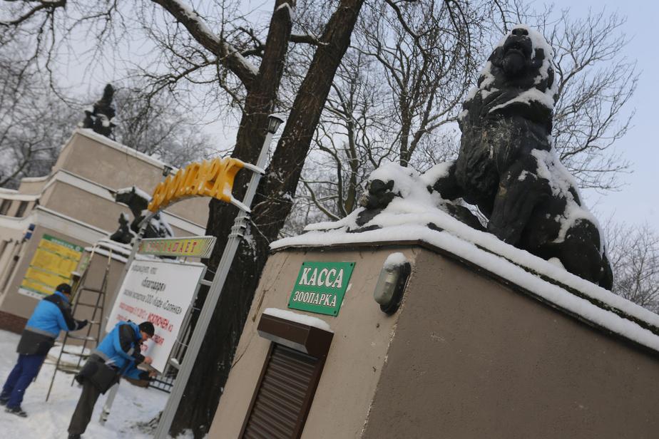 Калининградский зоопарк срочно закрыли из-за сильного ветра