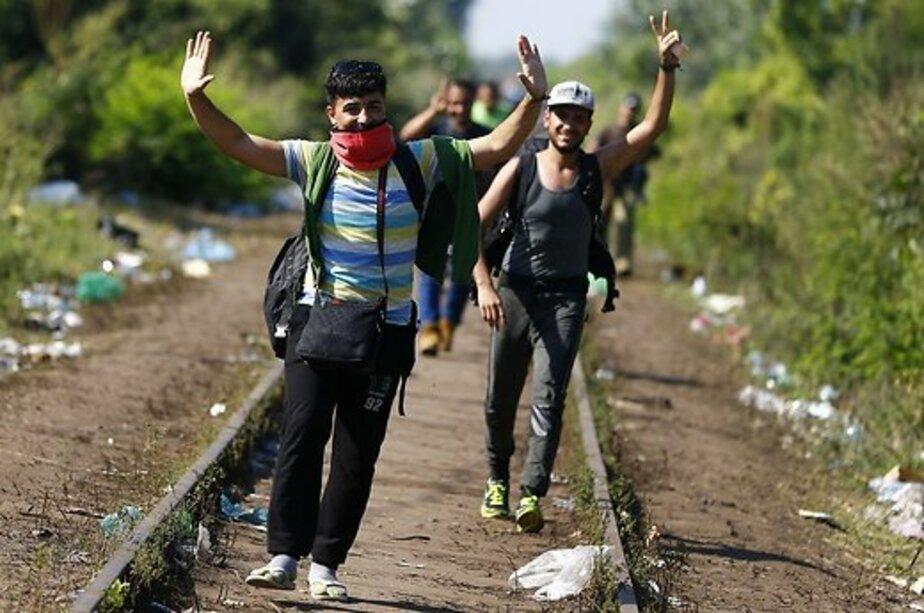 Литва пообещала вернуть контроль на границе в случае наплыва беженцев  - Новости Калининграда