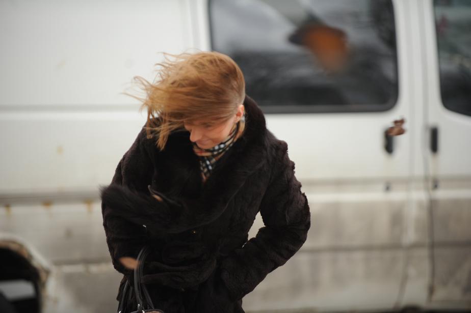 Синоптики прогнозируют в Калининграде сильный ветер - Новости Калининграда
