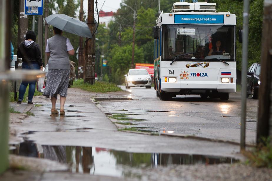 Мэрия: с сентября количество жалоб на работу общественного транспорта сократилось в 7,5 раза - Новости Калининграда