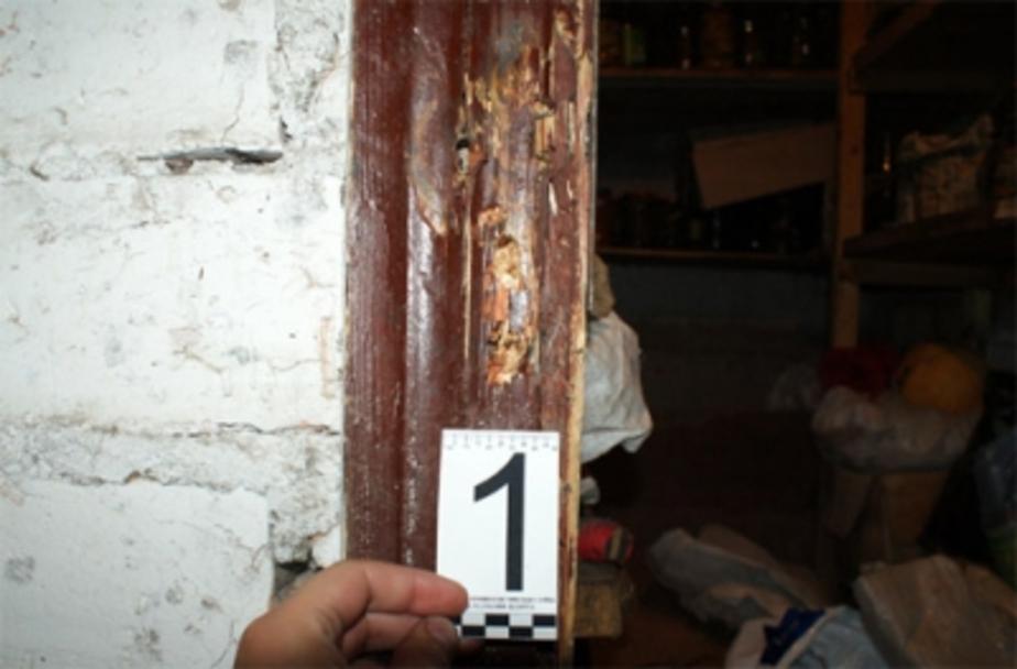 Калининградец похитил из чужого подвала бензопилу, два спальных мешка и рюкзак  - Новости Калининграда