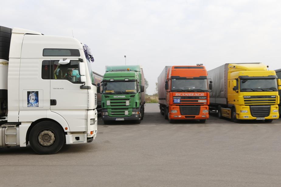 Калининградского дальнобойщика арестовали на 14 суток из-за неоплаченных дорожных штрафов  - Новости Калининграда