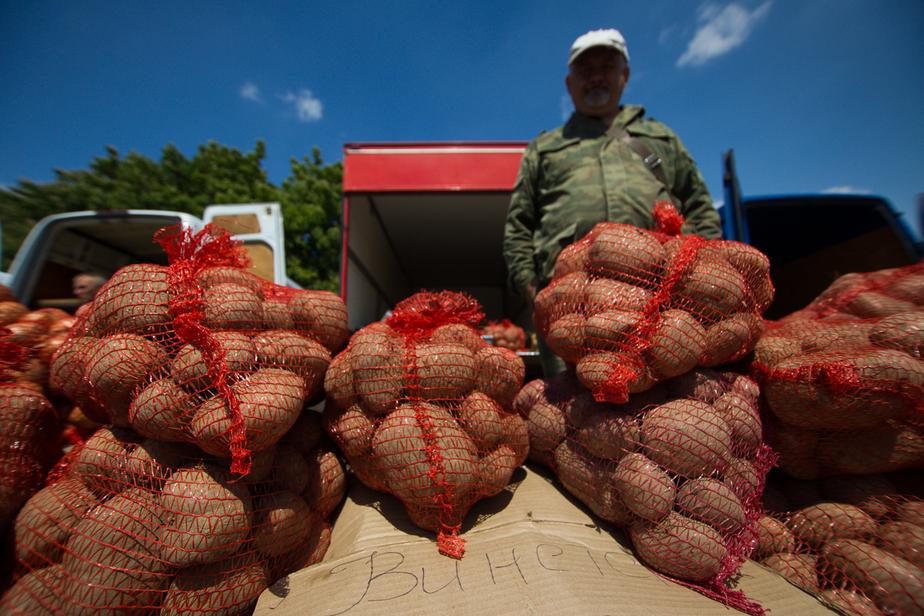 В Калининграде в августе откроются муниципальные ярмарки с дешевыми продуктами - Новости Калининграда