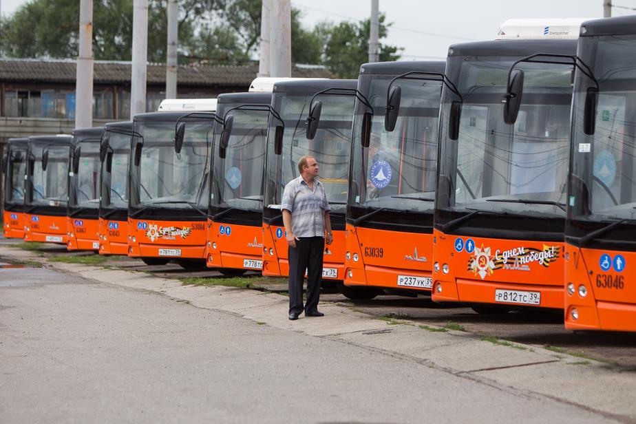 Власти Калининграда признали, что город во время ЧМ-2018 не справится без белорусских водителей - Новости Калининграда