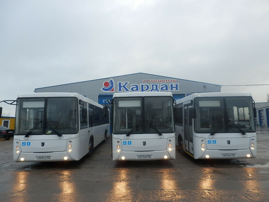 В Калининграде на линию вышли новые российские автобусы