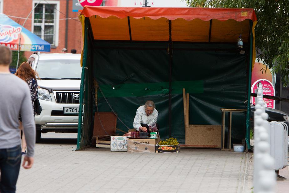 """Глава Минфина призвал """"срочно повысить"""" пенсионный возраст - Новости Калининграда"""