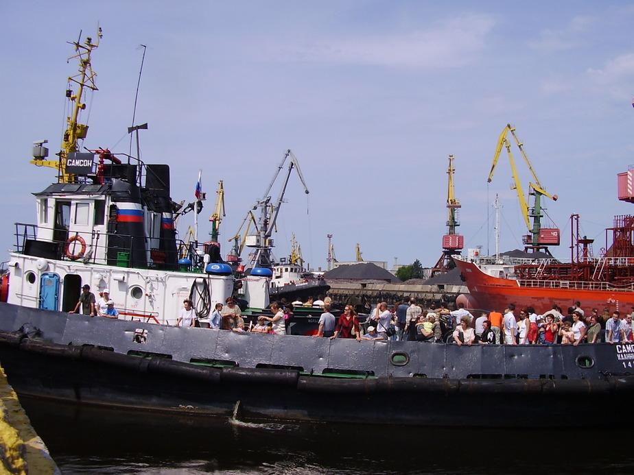 В Калининграде приостановили ввоз 28 тонн сурими из Индии